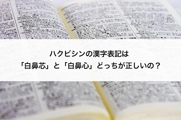 ハクビシンの漢字表記は「白鼻芯」と「白鼻心」どっちが正しいの?