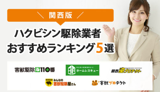 【関西版】ハクビシン駆除業者おすすめランキングTOP5