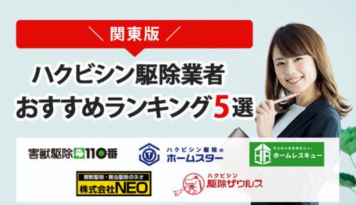 【関東版】ハクビシン駆除業者おすすめランキングTOP5