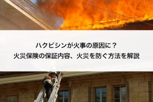 ハクビシン 火災